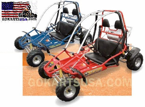 Scorpion RT 150cc Gokart by American Sportworks, FREE SHIPPING on